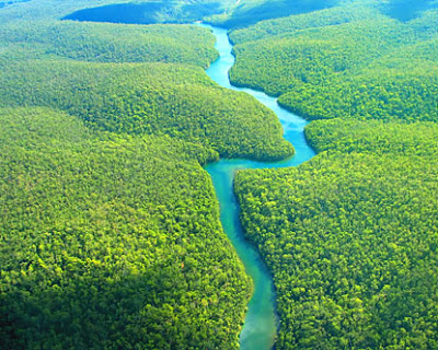 Great_Amazon_Rain_Forest_Brazil.jpg