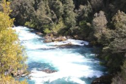 Pucon_River.jpg